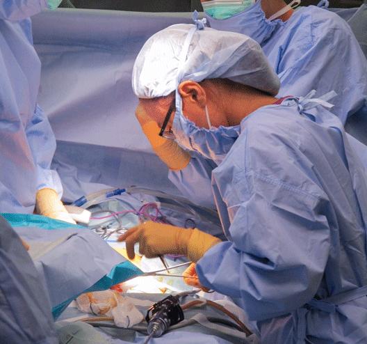形成外科研修