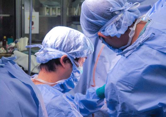 整形外科研修で執刀する研修医